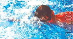 Schwimmkurse für Fortgeschrittene aquaris schwimmschule innsbruck